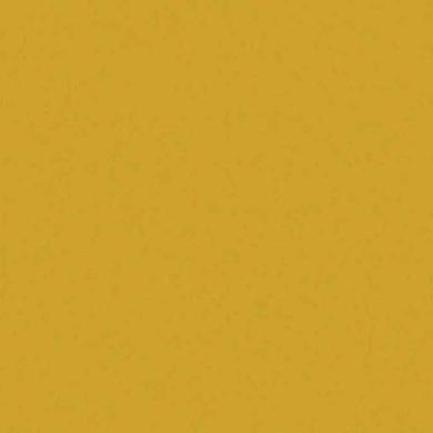 241_fs08_Mustár